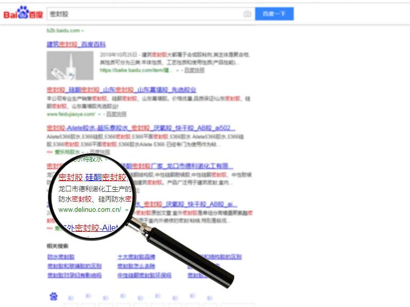 网站排名案例:德利诺密封胶--密封胶